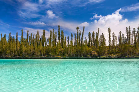 Natural pool of Oro Bay, Isle of Pines, New Caledonia 免版税图像