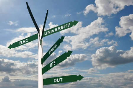 french text: Road sign with French text meaning university options, education concept Stock Photo