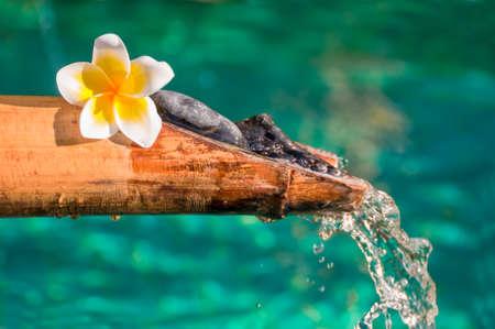 bamboo fountain: Bamboo fountain close up, plumeria flower