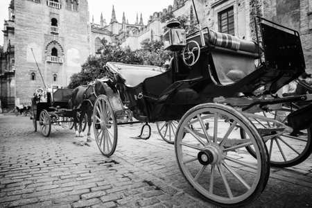 horse and carriage: Horse carriage in Seville near the Giralda cathedral, Andalusia, Spain