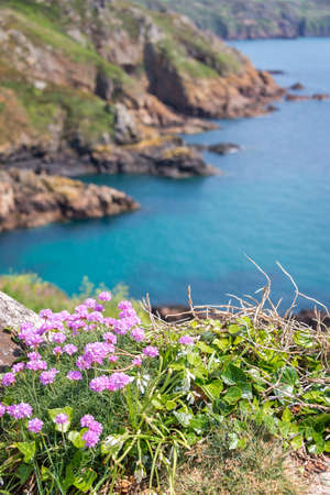 Cliffs of the South coast, Guernsey
