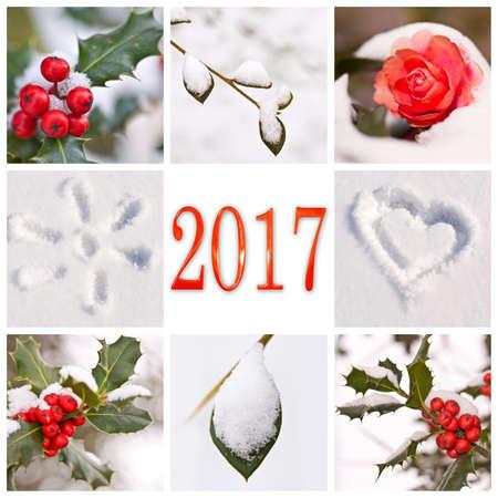2017, 눈과 겨울 빨간색과 흰색 자연 사진 콜라주