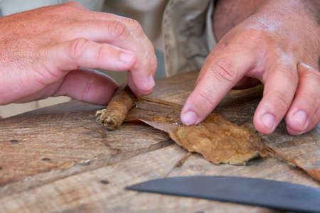 rolling up: Close up of hands rolling a cigar in Cuba Stock Photo
