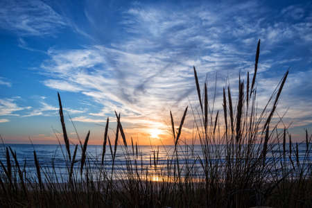 Zonsondergang op de atlantische oceaan, strand gras silhouet in Lacanau Frankrijk Stockfoto - 69388939