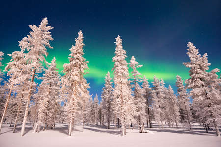 Northern lights, Aurora Borealis in Lapland, Finland
