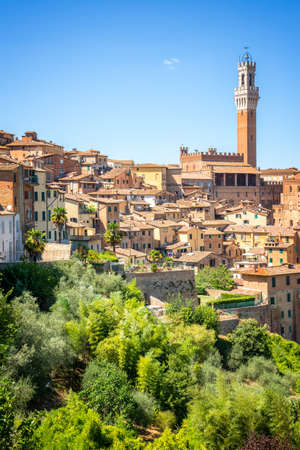 Cityscape of Siena, aerial view with the Torre del Mangia, Tuscany, Italy