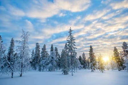 Snowy landscape at sunset, frozen trees in winter in Saariselka, Lapland, Finland Stock Photo