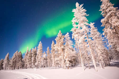 Northern lights, Aurora Borealis in Lapland, Finland