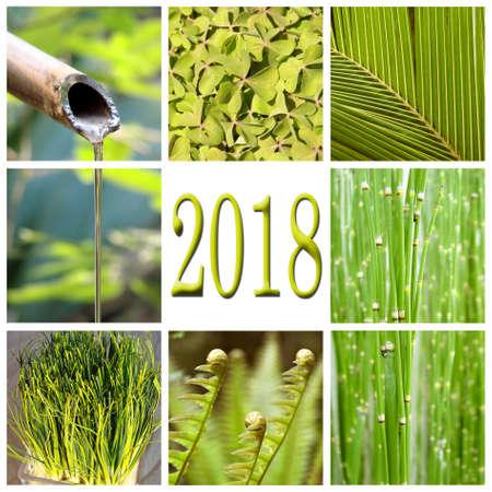 2018, green vegetation collage Stock Photo