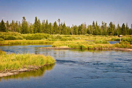 Madison river near West Yellowstone, Montana, USA
