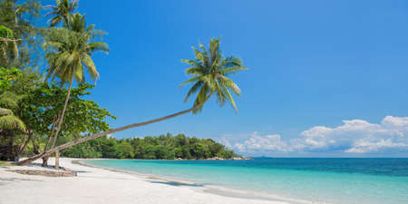 Tropical beach panorama with a leaning palm tree, Bintan island near Singapore, Indonesia