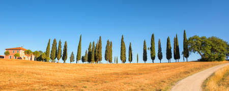 Beautiful typical panorama landscape of Val dOrcia in Tuscany at sunset, Italy  Stock Photo