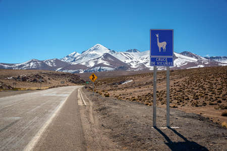 """Road sign """"cruce de vicunas"""" (meaning vicugnas crossing) on a road in Chile Stock Photo"""