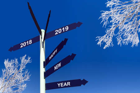 Happy new year 2019 on direction signs, snowy trees Archivio Fotografico