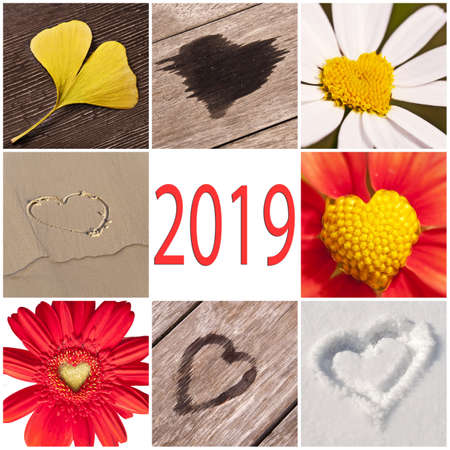 2019, collection of hearts related with nature, new year and valentine day concept