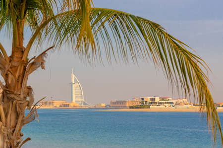 View on Burj al arab Jumeirah and palm tree in Dubai, United Arab Emirates