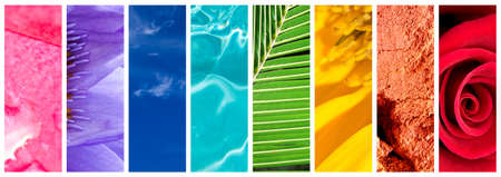Natural rainbow gradation panoramic collage, rainbow colors in nature concept Stock Photo