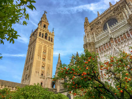 Cathedral of Seville and the Giralda, Andalusia, Spain