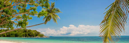 Tropical paradise beach panorama with a leaning palm tree
