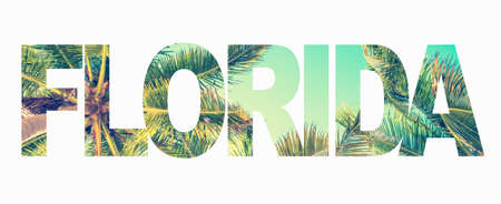 Word Florida with palm trees on white background 版權商用圖片 - 123337600