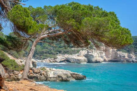 Cala Mitjana and Cala Mitjaneta in Menorca, Balearic islands, Spain 写真素材