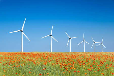 Graphic modern landscape of wind turbines aligned in a poppies field