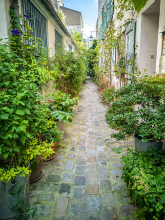 Pots of plants in a small cobbled dead-end street in Paris, france Stock Photo