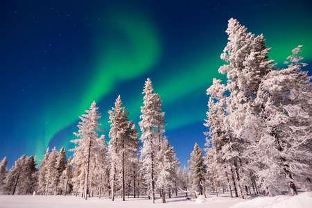 Zorza polarna, Aurora Borealis w Laponii, Finlandia