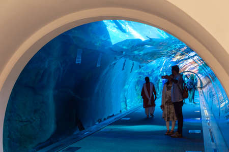 People in Dubai aquarium tunnel in Dubai mall, United Arab Emirates Editorial
