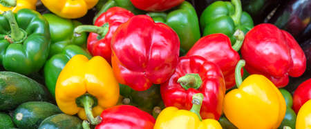 Yellow, green and red bell peppers panorama, summer vegetable web banner