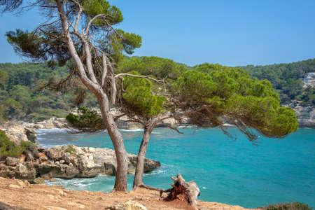 Cala Mitjana and Cala Mitjaneta in Menorca, Balearic islands, Spain Banco de Imagens