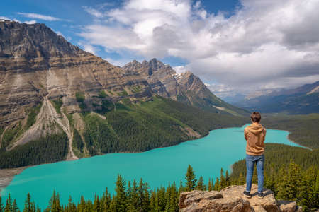 Young man looking at Peyto lake on Icefields Parkway in Banff National Park, Alberta, Rocky Mountains, Canada Editorial