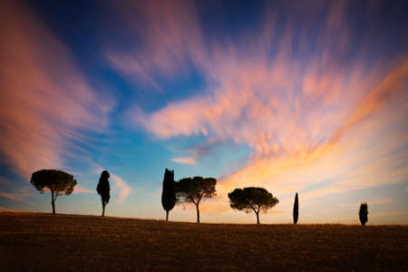 Row of cypress trees at sunset, dramatic sky, typical tuscan landscape with copy space Stock Photo