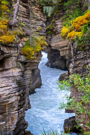 Athabasca falls in Jasper National Park, Rocky Mountains, Alberta, Canada