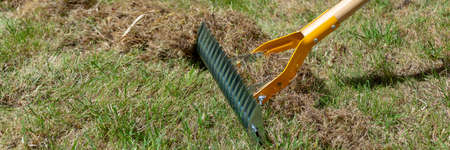 Close up on manual lawn scarifier in a garden in spring