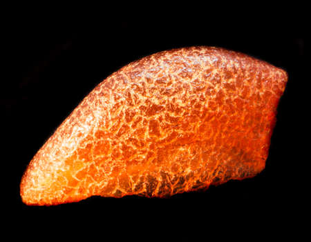 Natural piece of natural amber on black background isolated
