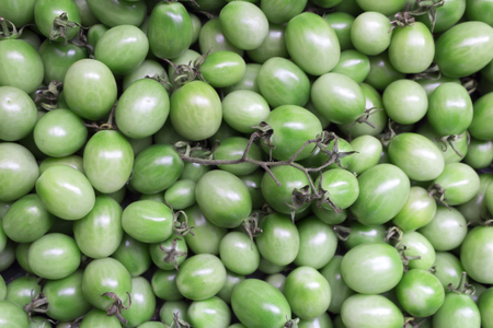 original ecological: Green tomatoes close-up