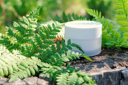 Cosmetic cream for skin care. Natural cosmetics in nature outdoors with green fern leaves