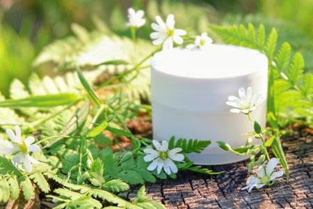 Kosmetische Creme zur Hautpflege. Naturkosmetik in der Natur im Freien mit grünen Farnblättern und Wildblumen Standard-Bild