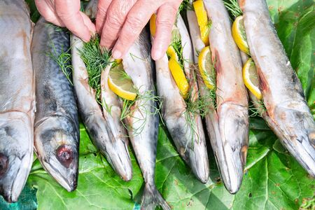 Fish mackerel filled with lemon and dill for cooking outdoors