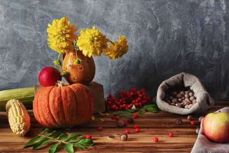 Still life in a rustic style. Fresh vegetables: pumpkin, apples, corn and hazelnuts in a bag