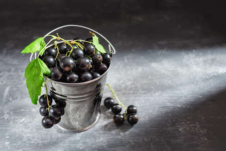 Decorative aluminum bucket with black currant berries on a gray background Zdjęcie Seryjne