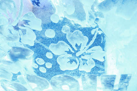 Flower of ice. White pattern on a blue ice background.