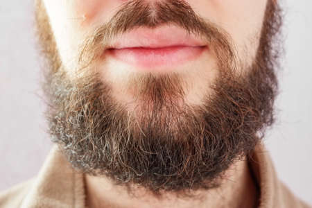 Beard male. Close-up cropped image of bearded man's face on gray.