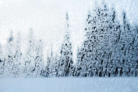 View of coniferous forest trees through a winter frozen window