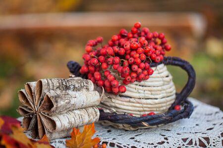 rowan: Autumn garden decor with rowan Stock Photo