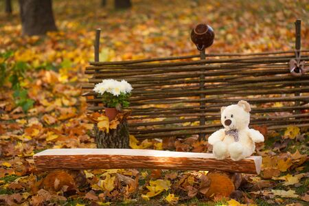 paling: Autumn garden decor with fence, wood bench and toy bear