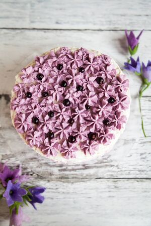 ombre cake: Ombre violet cake with black currants on light wooden background with purple bluebells Stock Photo