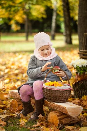 Young girl in autumn park sitting on a wooden bench near a fence, vibrant autumn background