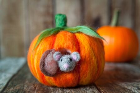 windows and doors: Felted pumpkin house for a cute plush mouse